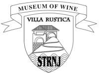 museum of wine logo